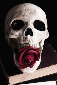 Menschlicher schädel mit rose auf büchern