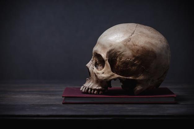 Menschlicher schädel posierte auf einem schreibtisch