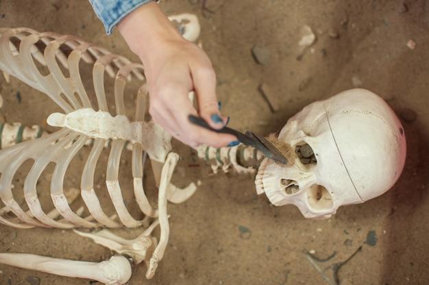 Menschliches fossil entdeckte konzept.