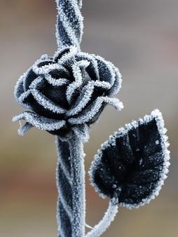 Metallrose als element des zauns an einem wintertag ist mit raureif bedeckt. metallzaun mit dekorativer rose an einem frostigen wintertag
