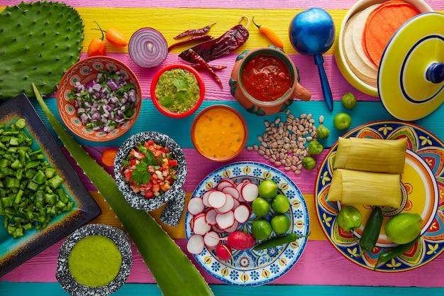 Mexikanische lebensmittelmischung mit saucen nopal und tamale