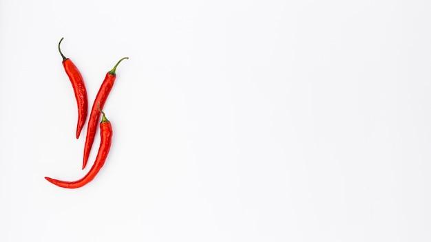 Mexikanische lebensmittelzusammensetzung der flachen lage mit chilis