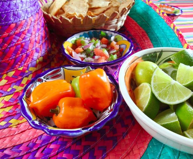 Mexikanische saucen pico de gallo habanero chili sauce