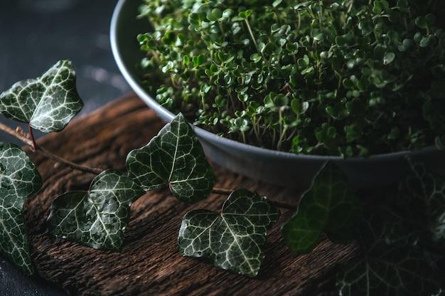Microgreen in einem grauen teller auf einem hölzernen rustikalen