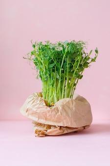 Microgreens in einer topftasche, einkaufstüte oder papiertüte, gesundes und leckeres veganes grünes essen für eine gesunde ernährung, mittagessen für die ganze familie, gesundes vegetarisches menü