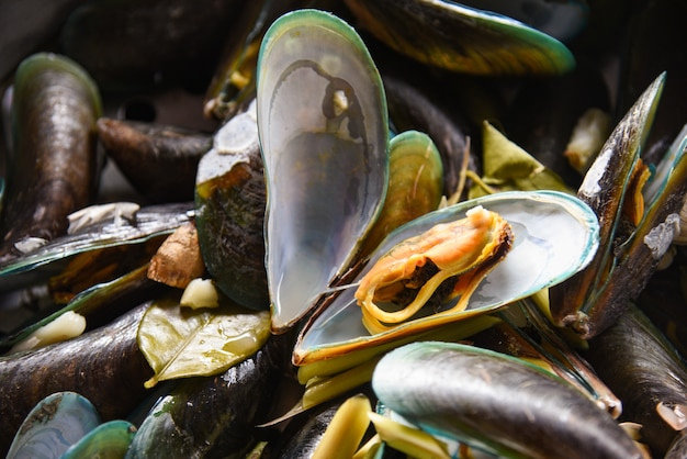 Miesmuscheln mit kräutern in einem heißen topf kochten dampfende meeresfrüchte der grünen miesmuschel