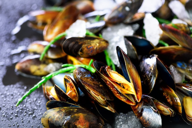 Miesmuscheln, mollusken, meerespflanze, seeanlagen, eis auf rustikalem metallhintergrund der alten weinlese.