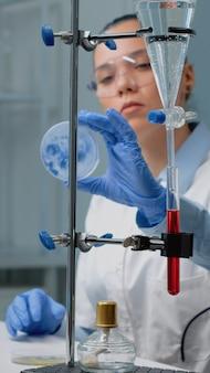 Mikrobiologiefrau, die petrischale im labor studiert