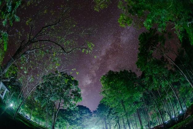 Milchstraße in der nacht