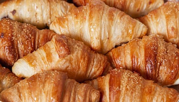 Mini-croissants mit schokolade gefüllt. isoliertes bild