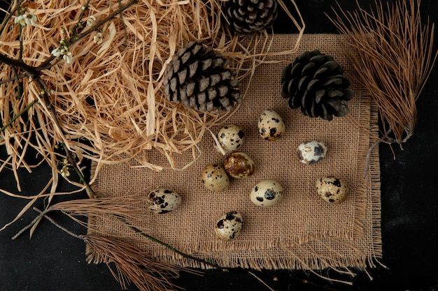 Mini-eier und tannenzapfen auf sackleinen mit stroh und ast auf schwarzem tisch