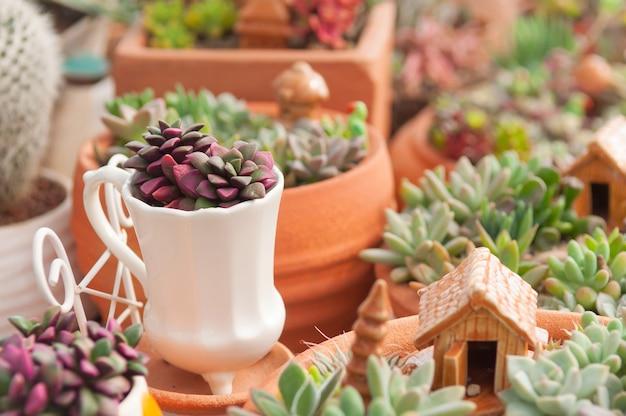 Mini-garten dekoration mit kaktus und keramik-objekt