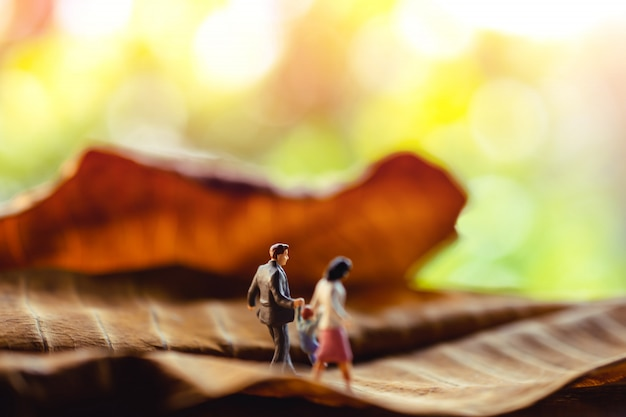 Miniatur des vater-, mutter- und sohnhändchenhaltens und gehens auf trockenes blatt im park