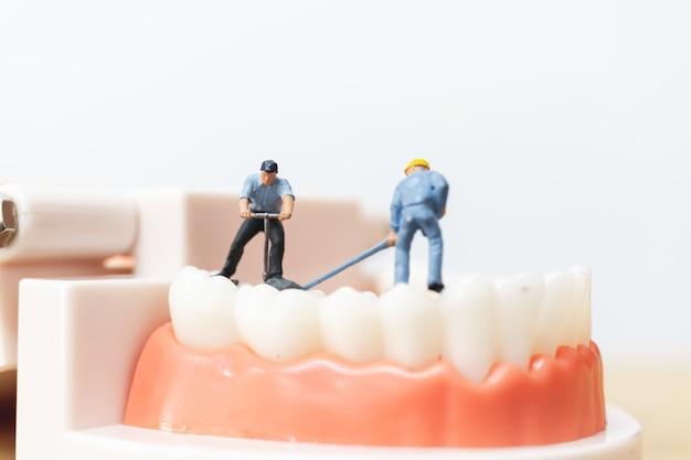 Miniaturleute: arbeitskraftteam, das einen zahn repariert