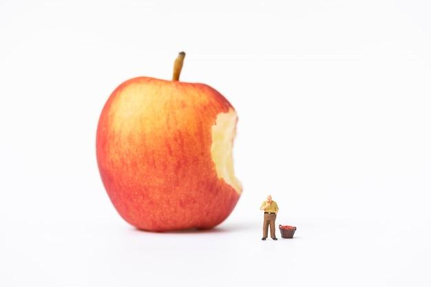 Miniaturleute, bauer, der auf der leiter klettert, um rote äpfel vom großen apfel zu sammeln
