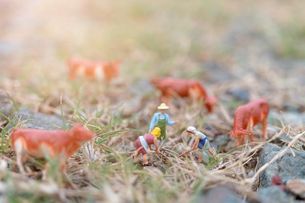 Miniaturleute: gärtner, der an dem feld arbeitet