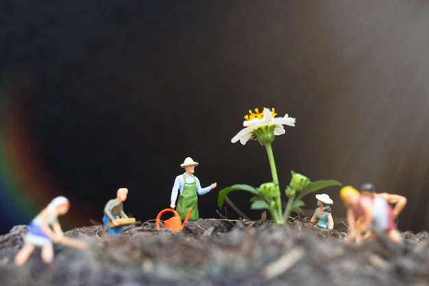 Miniaturmenschen, gärtner kümmern sich darum, pflanzen auf dem feld anzubauen