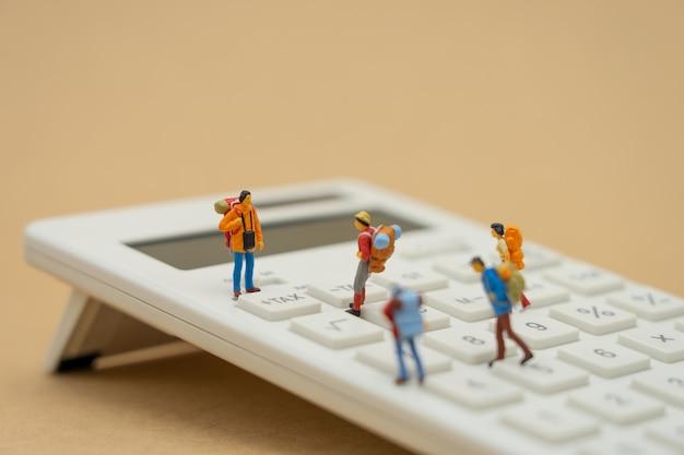 Miniaturmenschen lohnliste jährliches einkommen (tax) für das jahr auf dem taschenrechner.