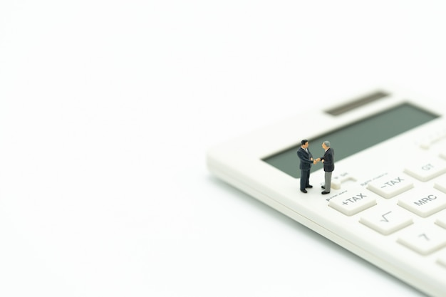 Miniaturmenschen zahlschlange jährliches einkommen (tax) für das jahr am rechner