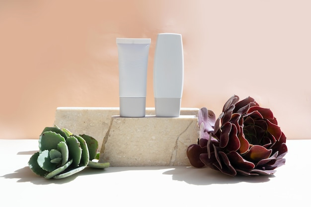 Minimale moderne kosmetikprodukte werden mit zwei tuben auf beigem hintergrund mit sukkulenten angezeigt