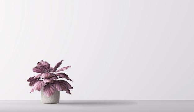 Minimale zimmerpflanze wohnkultur isoliert