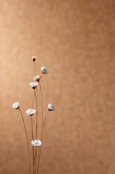 Minimale zusammensetzung der natürlichen pflanze