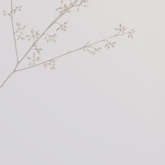 Minimaler botanischer hintergrund und wallpaper