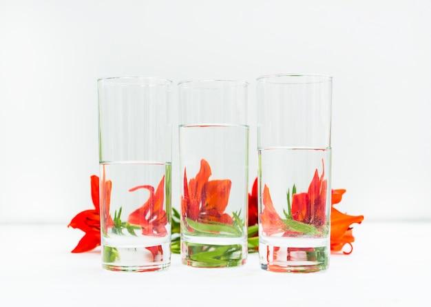 Minimalistische blumenkomposition. verzerrtes glas wasser, blumen, die durch flüssiges wasser und glas auf hellem hintergrund verzerrt werden.