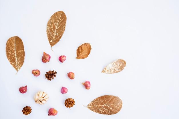 Minimalistisches konzept. knoblauch, zwiebel, getrocknete blätter, kiefernblüte auf weißem hintergrund. herbst, herbstkonzept. flache lage, ansicht von oben, kopienraum