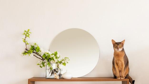 Minimistisches innenregalmodell des weißen wohnzimmers der katze. dekoration wohnraum. gemütliche innere runde spiegelblumen