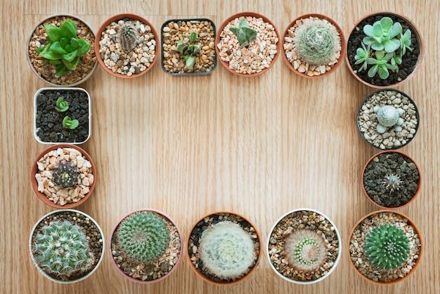 Mischungs-kaktus-topf und saftige anlage auf hölzernem hintergrund