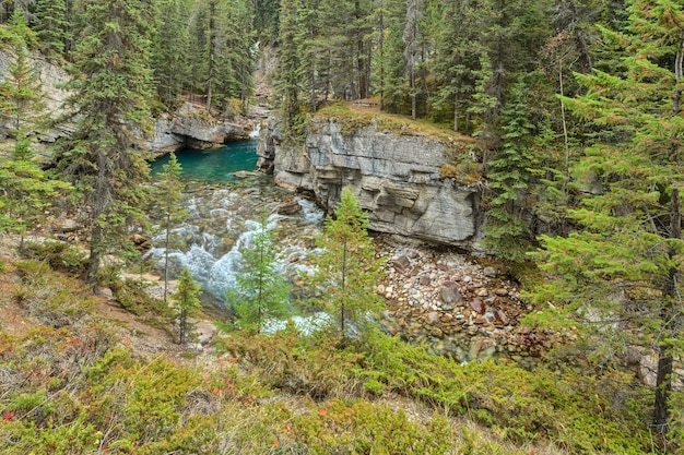 Mistaya canyon jasper nationalpark alberta kanada