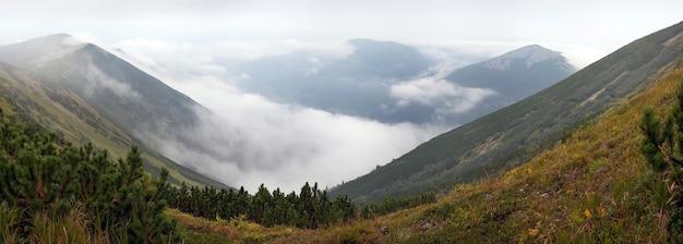 Misty karpaten (ukraine) landschaft (mit fernen vögeln im himmel). sieben schüsse zusammengesetztes bild.