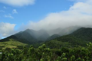 Misty mountain, aurora
