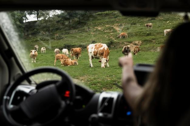 Mit dem auto auf dem land unterwegs