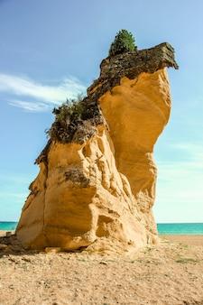 Mit moosen bewachsener felsen am albufeira-strand, umgeben vom meer in portugal