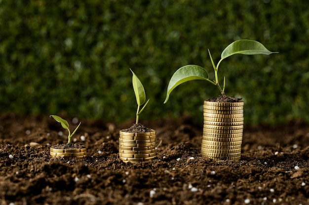Mit pflanzen auf erde gestapelte münzen