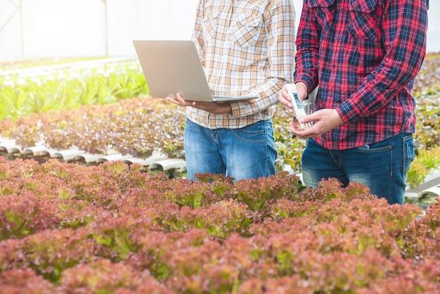 Mitarbeiter von gemüsefarmen prüfen die daten und die testqualität von grünem gemüse in einem wasserkulturbetrieb