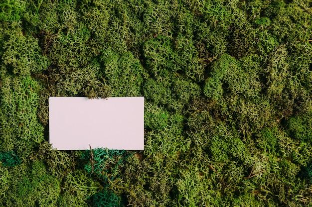 Mock-up-visitenkarten auf einem hintergrund aus grünem moos. konzept zum thema natur.