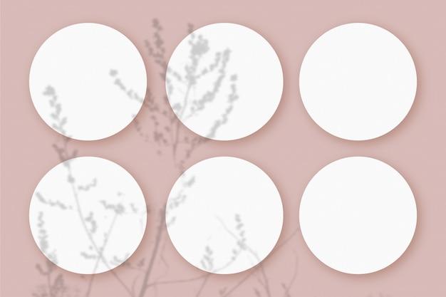 Mockup mit pflanzlichen schatten, die auf 6 runden blättern aus strukturiertem weißem papier auf einem rosafarbenen tischhintergrund überlagert sind.