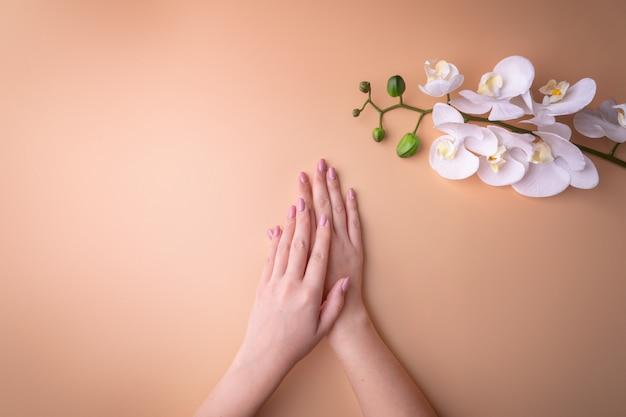 Mode, weibliche hände mit maniküre, nagelpflege, weißen orchideenblüten, gesunder haut und naturkosmetik. draufsicht, die gegen einen pudrigen hintergrund kontrastiert.