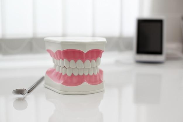 Modell des künstlichen kiefers auf dem tisch in der zahnarztpraxis