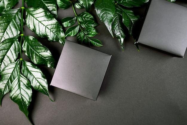 Modell für schwarze geschenkbox ein dunkler hintergrund mit grünen blättern an den seiten, kreatives layout, flache lage, naturkonzept, platz für text, draufsicht