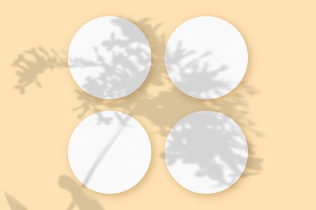 Modell mit gemüseschatten überlagert auf 4 runden blättern aus strukturiertem weißem papier auf einem beigen tischhintergrund.