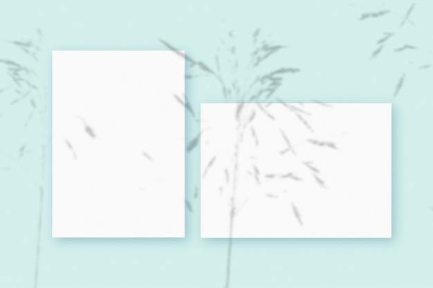 Modell mit pflanzenschatten, die auf einem horizontalen und vertikalen blatt aus strukturiertem weißem papier auf blauem tischhintergrund überlagert sind.