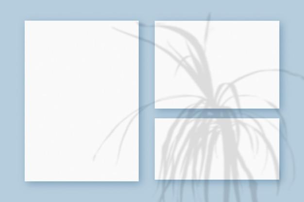 Modell mit pflanzenschatten überlagert auf 3 horizontalen und vertikalen blättern aus strukturiertem weißem papier auf blauem tischhintergrund.