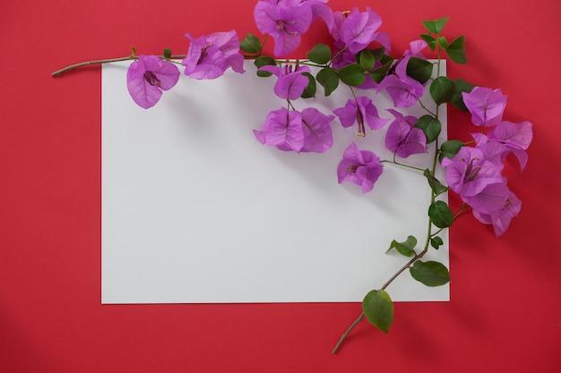 Modellweißbuch mit platz für text auf rotem hintergrund und blume.