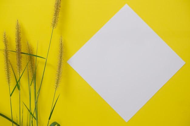 Modellweißbuch mit platz für text oder bild auf gelbem hintergrund und blume.