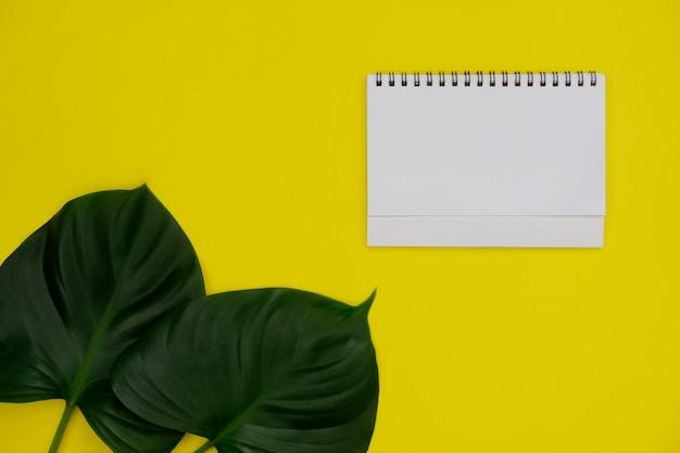 Modellweißbuch mit platz für text oder bild auf gelbem hintergrund und tropischem blatt.