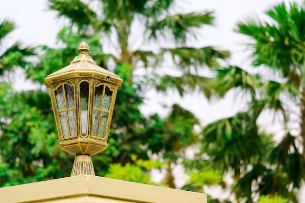 Moderne lampen auf den hauszaun-grünbäumen am hinterhof